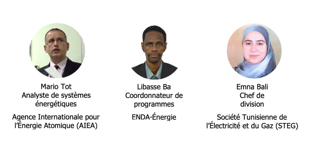 La modélisation au service de la planification énergétique : exemples d'outils et applications