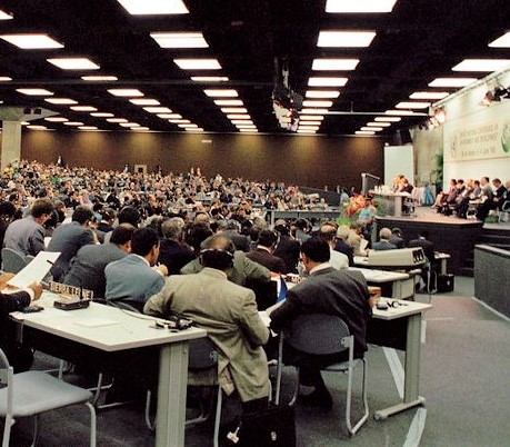 Comment mettre en pratique les synergies d'action entre les conventions environnementales de Rio ?